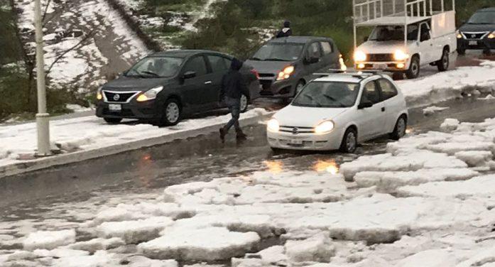 Lluvia en zona metropolitana causa encharcamientos y caída de árboles