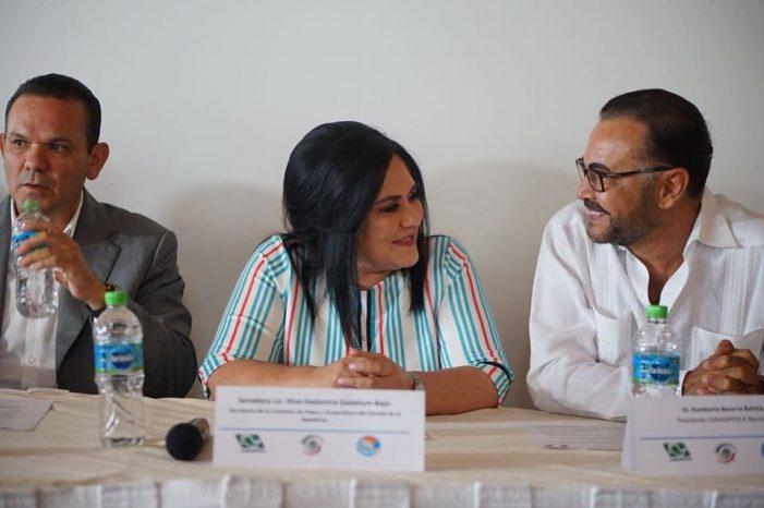 Sinaloa | Reconoce Canainpesca a la senadora Diva Gastélum
