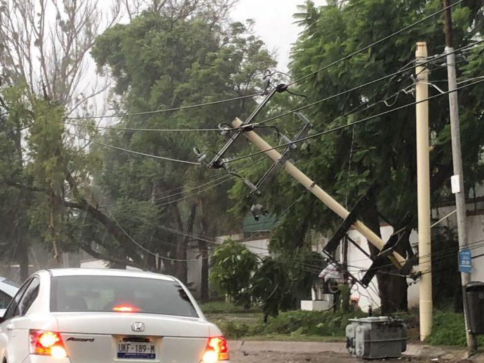 Lluvia en Querétaro deja un árbol caído y severos encharcamientos