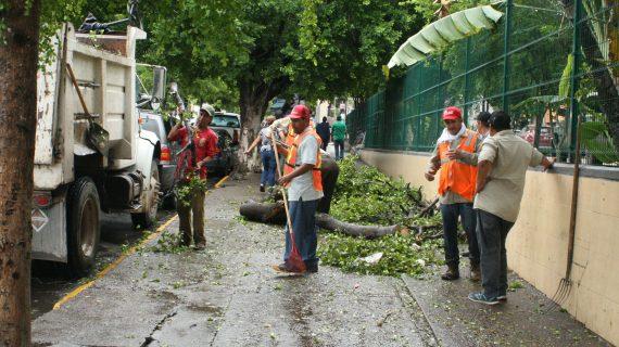 Sinaloa | Encharcamientos y caída de árboles provocan lluvias en Culiacán