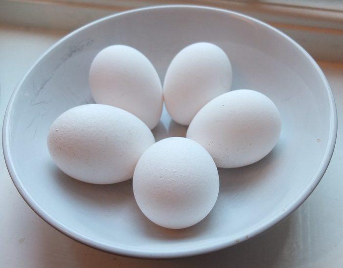 Comer huevo aumenta la inteligencia