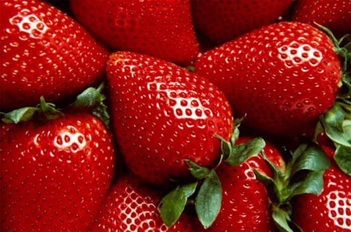 Australia| 15 años de condena a mujer que escondía agujas en las fresas