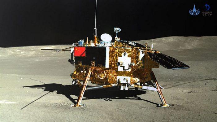 China logró que una semilla de algodón germinara… ¡En la luna!