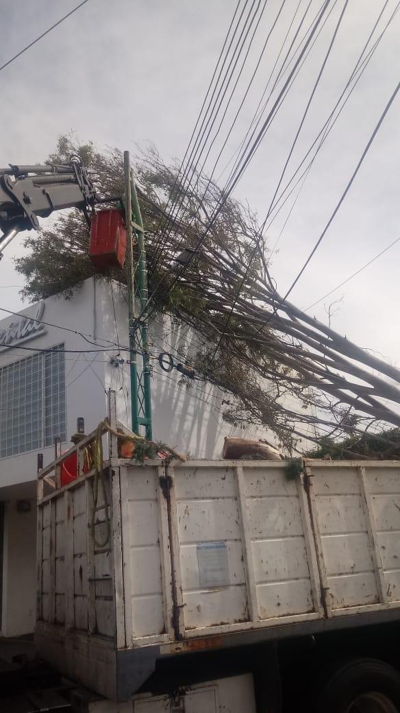 Municipio de Querétaro mantiene operativo ante las rachas de viento
