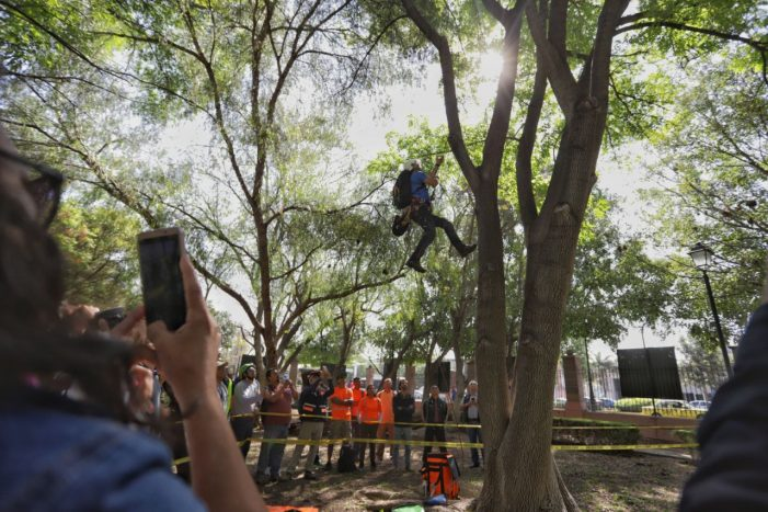 Realizan quinto Campeonato de Trepa Árboles en Querétaro