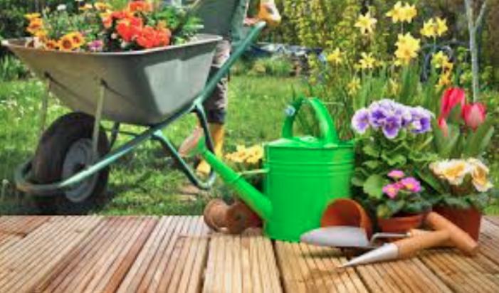 Jardinería un arte y técnica
