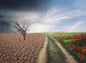AHORA EL CAMBIO CLIMÁTICO