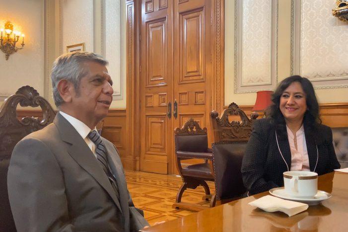 Irma Eréndira Sandoval es echada de la SFP
