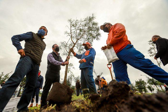 Municipio de Querétaro celebra el Día Nacional del Árbol